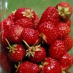 jordgubbar-i-glasbringareli